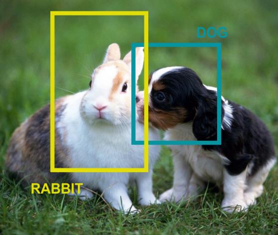 Разметка изображений