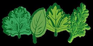 herb-kit.png