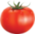 tomato_PNG12567.png