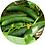 Thumbnail: Ett odlingskit till barn