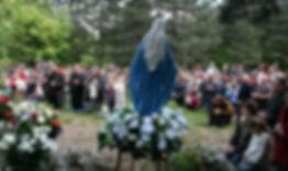 Dechticepásovka3.jpg