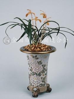 御前の花  Gozennohana