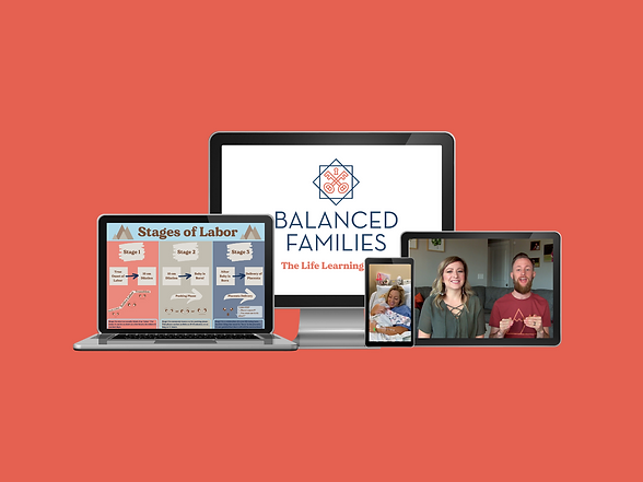 The Balanced Families Comprehensive Chil