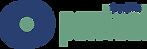 logo_Pontual.png
