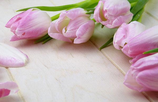 flower-3070161_1920.jpg