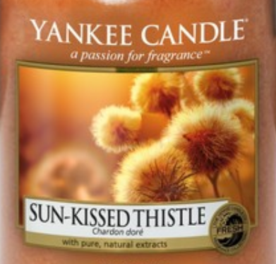 Sun-Kissed Thistle Yankee Candle Wax Crumble Pot 22g