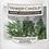 Thumbnail: Mahogany and Cedar Yankee Candle Wax Crumble Pot