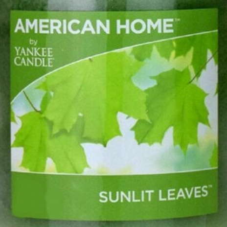 Sunlit Leaves USA Yankee Candle Wax Crumble Pot
