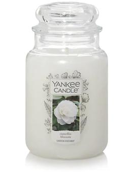 Camellia Blossom usa yankee candle wax a
