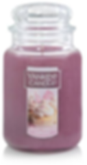 Bunny Vanilla Cupcake usa yankee candle