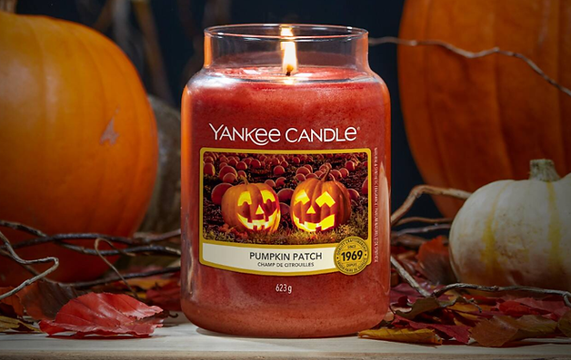 YANKEE CANDLE 2020 PUMPKIN PATCH WAX ADD
