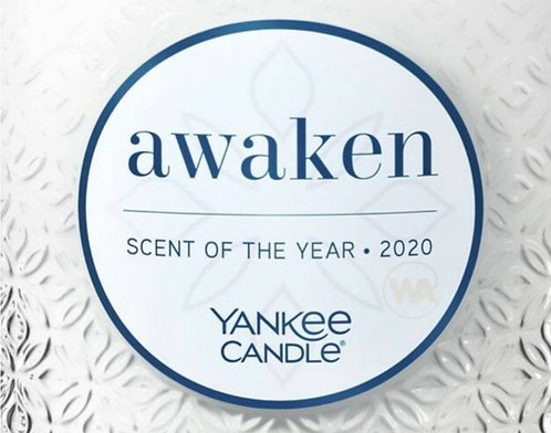 Awaken 2020 Yankee Candle Wax Crumble Pot 22g
