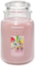 RAINBOW SHAKE USA YANKEE CANDLE 2019 WAX