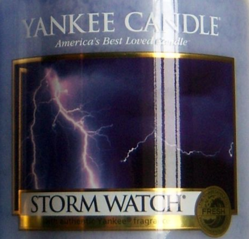 Storm Watch USA Yankee Candle Wax Crumble Pot 22g