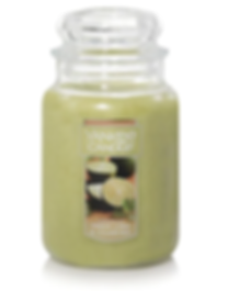 Fresh Lime & Cilantro yankee candle usa