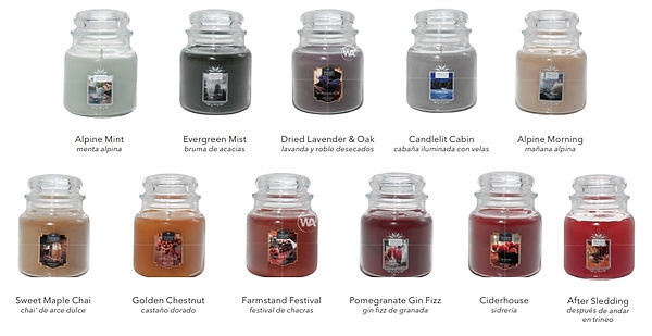 USA NEW SCENTS FALL AND FESTIVE 2019 WAX