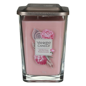 yankee-candle-1652005e-elevation-salt-mi