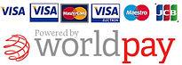 payment-logos-large-450x160.jpg