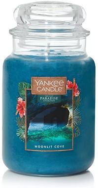 2021-01-08 10_45_04-Yankee Candle Moonli