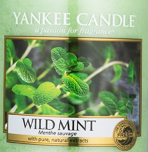 Wild Mint Yankee Candle Wax Crumble Pot 22g