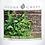 Thumbnail: Minted Eucalyptus Goose Creek Wax Crumble Pot 22g