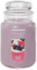 BERRY BLISS USA YANKEE CANDLE 2019 WAX A