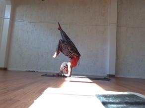 Yoga Snob or Yoga Hobbit?