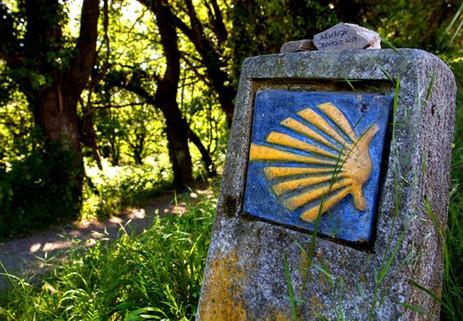 camino-de-santiago-verano-2953-1.jpg