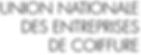 Logo UNEC.PNG