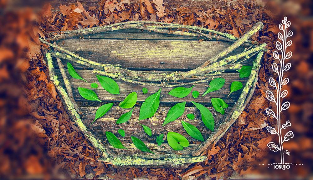 Forest Art by Konutko