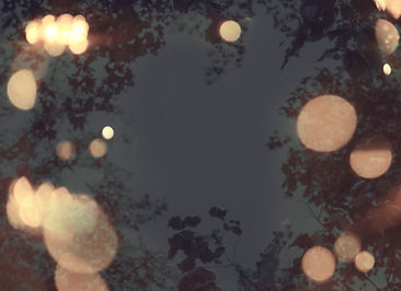 Background Wedding Lights LR.jpg