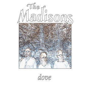 The Madisons - Dove