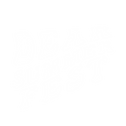 Dear Summer Fest Logo white.png