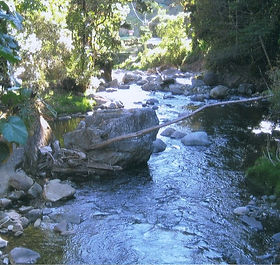 San Isidro 5 acre property forsale