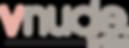 vnude_logo.png