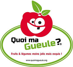 Logo Sols & Fruits.jpg