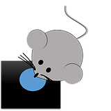 Mouse Drinking.png