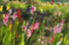 2018.33.garden.110x165cm.jpg