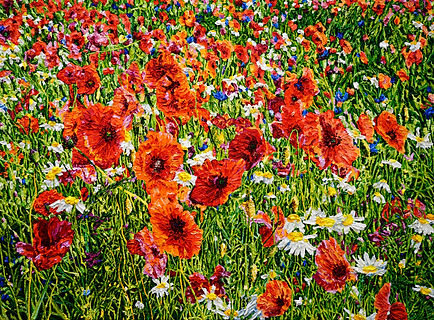 Flower Meadow 160x220cm oil on canvas 20
