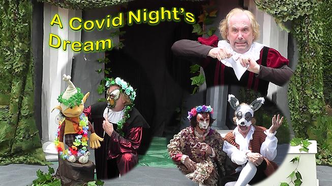 A covid night's dream.png