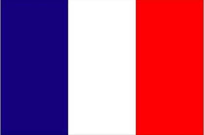 French_flag222.jpg