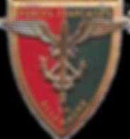 Insigne_des_forces_françaises_en_Allemag