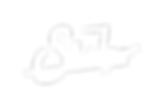 Suhr Logo Final White.png