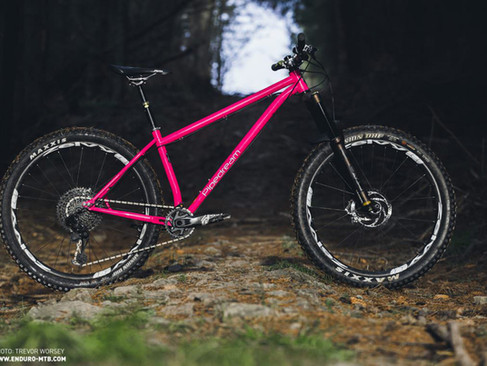 MOXIE bike