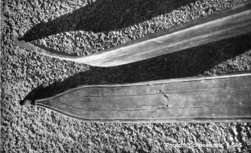 Skis Eggenberg Sils 1896