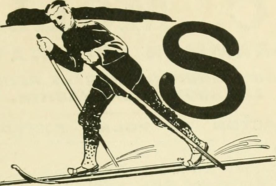 Logo Ski STAUB