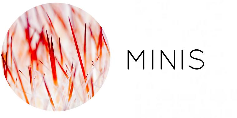 mini_pendientes.PNG
