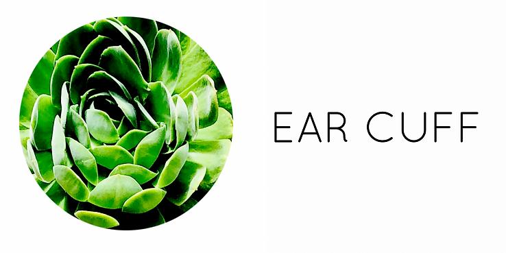 categoria_earcuff.PNG