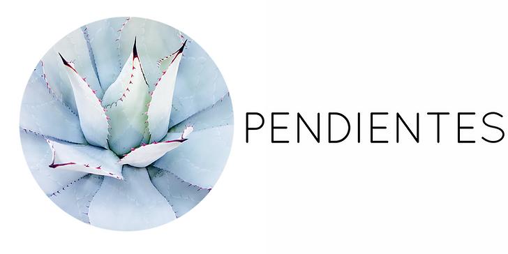 categoria_pendientes.PNG