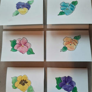 Pansy Cards